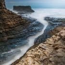Peninsula Nature Photographers Unite