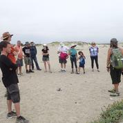 Nature Conservancy interpretive Nature Walks