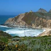 Bay Area Women's Midweek Hiking Group