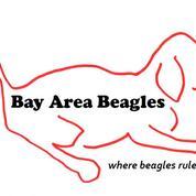 Bay Area Beagles