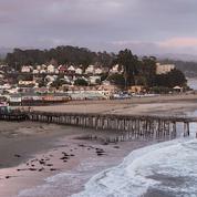 Shut Up & Write!® Santa Cruz / Monterey Bay