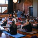 LGBTQ+ All Levels Yoga