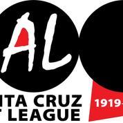 Santa Cruz Art League Workshops