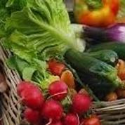 San Luis Obispo Food and Farm Adventures