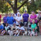 KCA - Kern Canine Activities