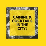 Downtown's: Canines & Cocktails in the City!
