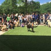 RRUFF Dog Park Meetup Group