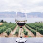 Sacramento Women's Wine Club
