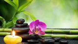 Reiki and Guided Meditation