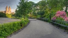 Post Thanksgiving Central Park Walk