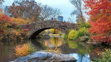 Singles Date Walking - Central Park