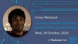 Webinar: Corey Weistuch: Learning complex dynamical patterns from simple models