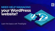 FREE Online WordPress Website Training