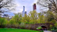 Walk in Central Park!