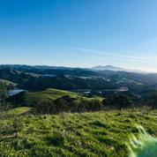 Trail running, hiking + Yoga (*PRIVATE GROUP, Oakland, CA)