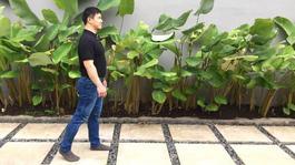 Natural Walking