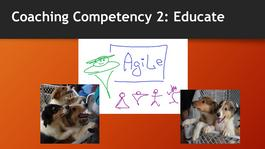 Coaching Competency 2: Educate – Awareness and Understanding