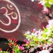 Bhakti Kitchen: Practicing  Kitchen Yoga  !