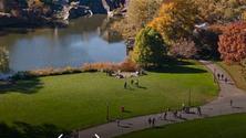 6MV Central Park Walk