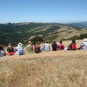 50+ Almaden Hiking & Social Group