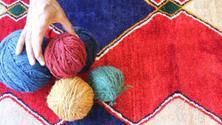Persian rug! A garden of thousand colours!