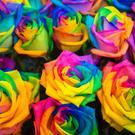 Las Vegas LGBTQ+ Social Group...