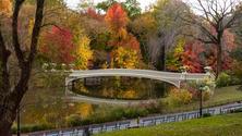Autumn in Central Park photo walk
