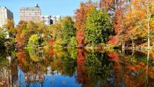 Annual Fall Foliage Walk (no Cover) Two WaterFalls