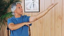 Seated Tai Chi and Chi Kung Workout