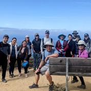 Bay Area Hiking, Walking, Wellness Meetup