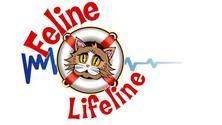 Feline Lifeline Monthly Meeting